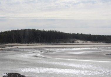Opération de réensablement en baie d'Authie